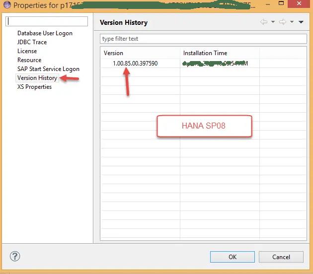 SAP HANA DB Version SP08