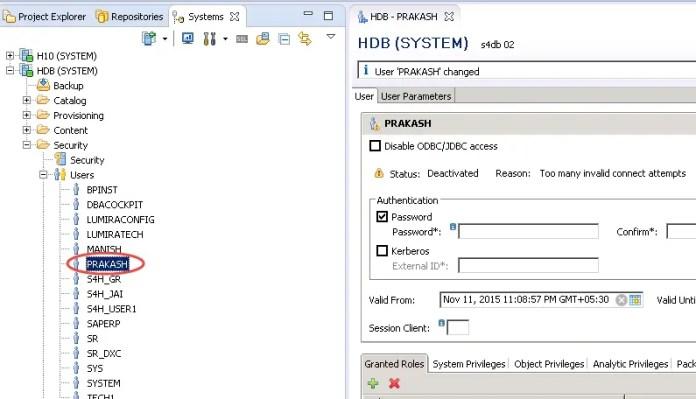 KPI Modeler Framework - HANA User