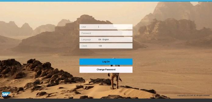 SAP Fiori Launchpad Logon Image