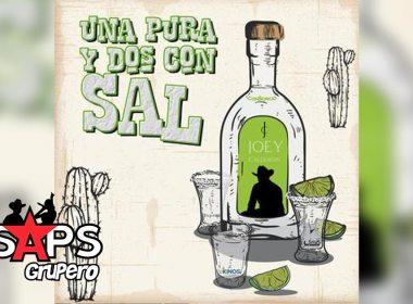 Letra Una Pura Y Dos Con Sal – Joey Calderón