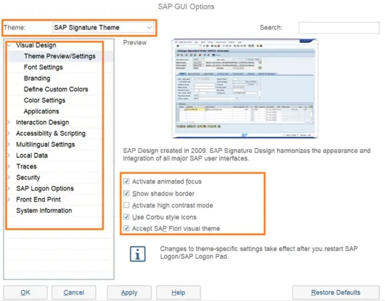 How to customize SAP GUI options