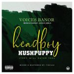 Voices Banor – Headboy Hushpuppy (They Will Catch You)