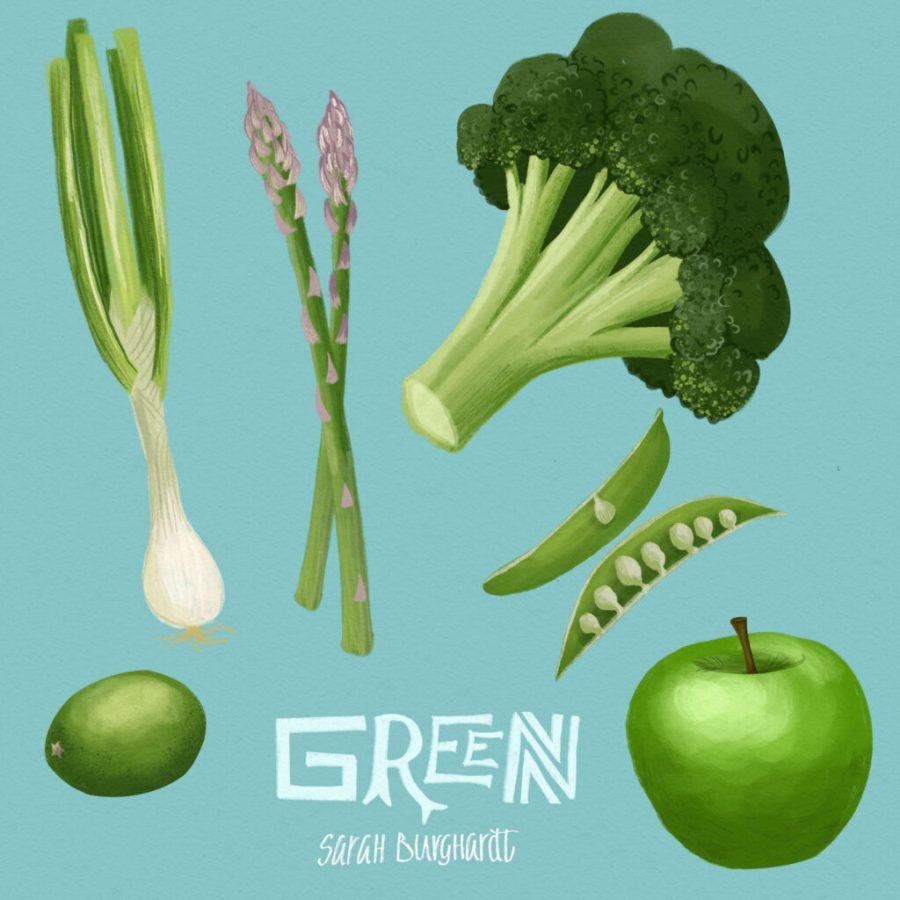 Food Illustration vegetabele green