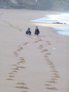 line 10 pic 10-001 beach footprints smaller