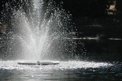 Fountain MJ