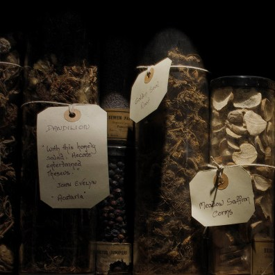 Healing Herbs, Museum of Witchcraft and Magic