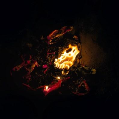 Fire, Wish 4, 2014