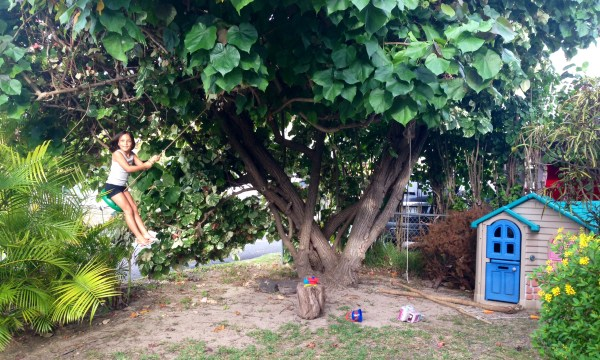 Photo of author's daughter swinging from a tree