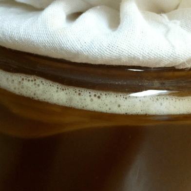 Closeup of SCOBY and foam