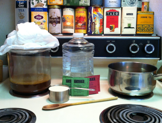 ingredients for home brew kombucha