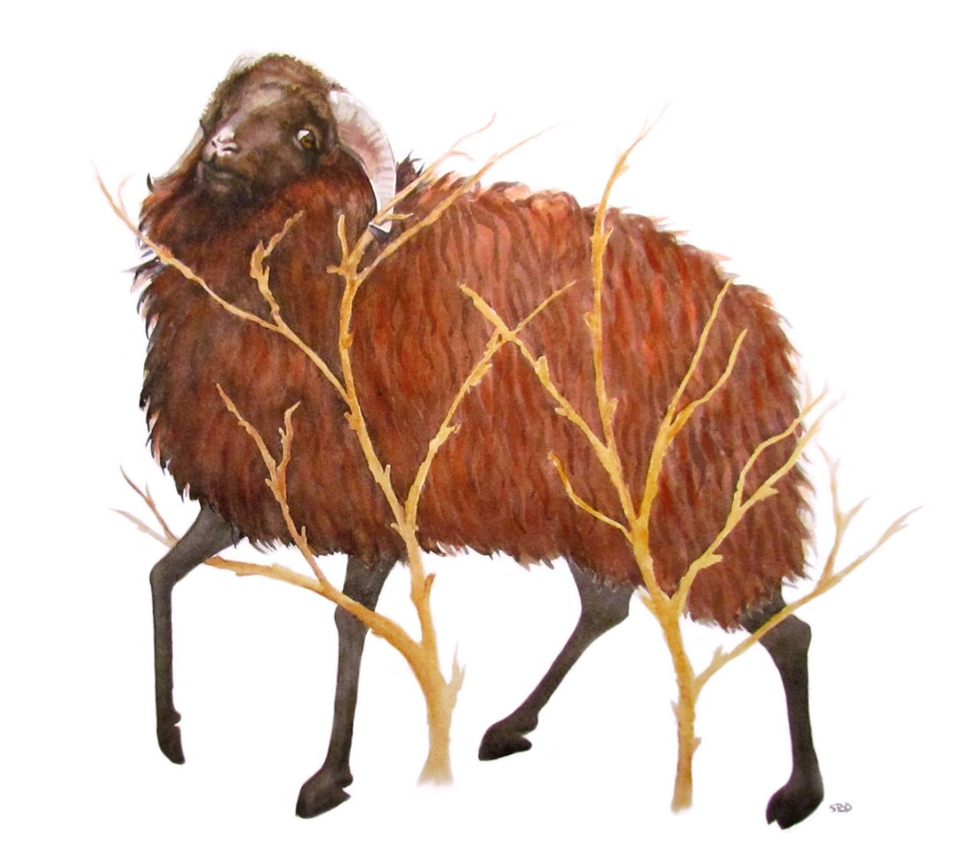 Abraham Looked and Beheld the Ram in the thicket