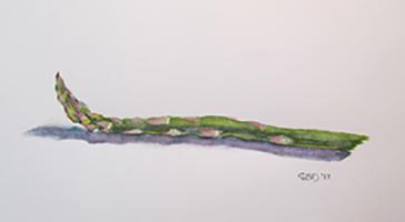 An Asparagus