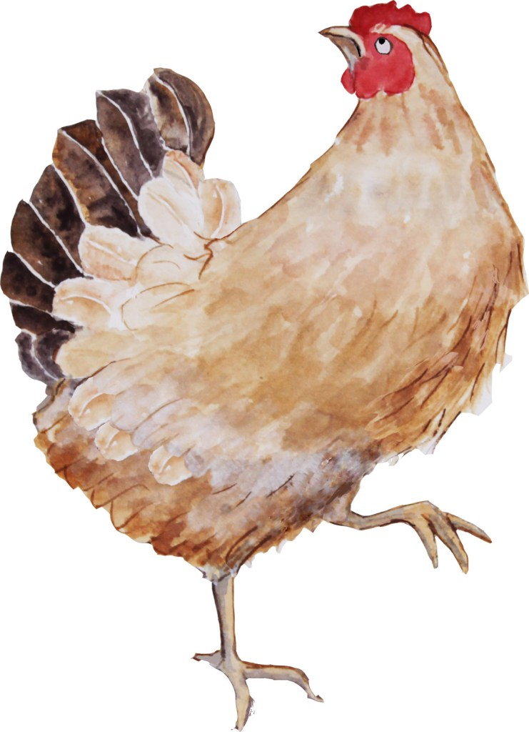 illustration of Miss Hen
