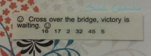 Cross over the bridge, victory is waiting =) #fortunecookiefriday