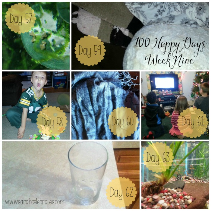 100 Happy Days - Week 9 | Sarah Celebrates