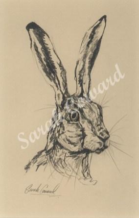 Hare - beige