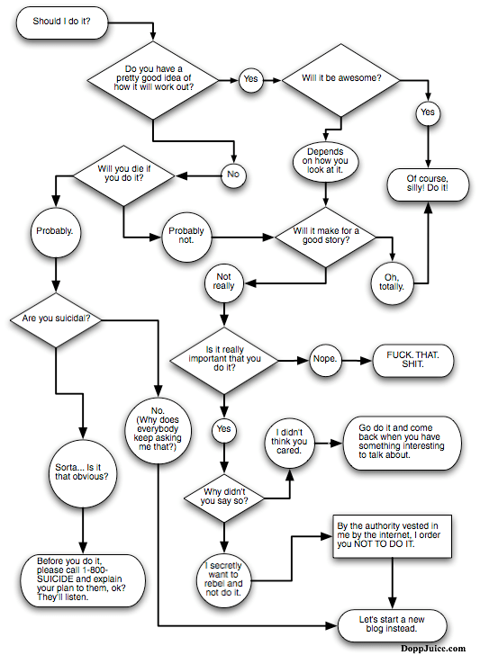 Flowchart that helps decide whether or not to do something based largely on the 'for the story of it' approach