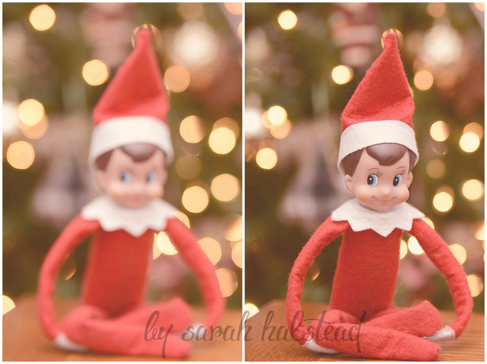 Ralphie Elf Snapshots