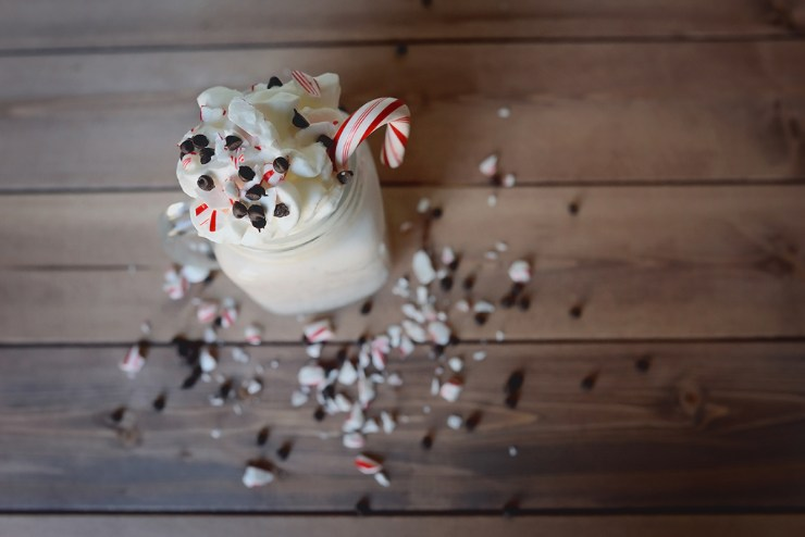 Peppermint Chocolate Chip Milkshake