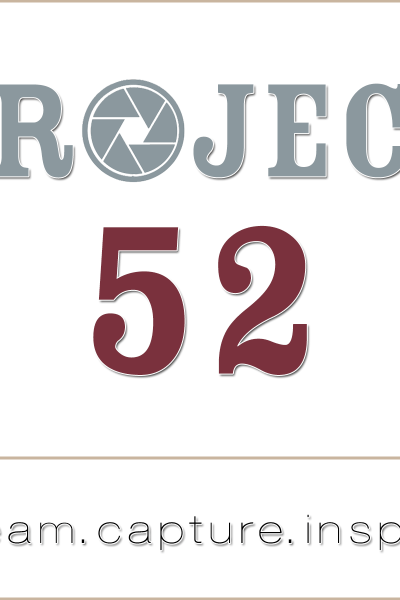Project 52 Introduction