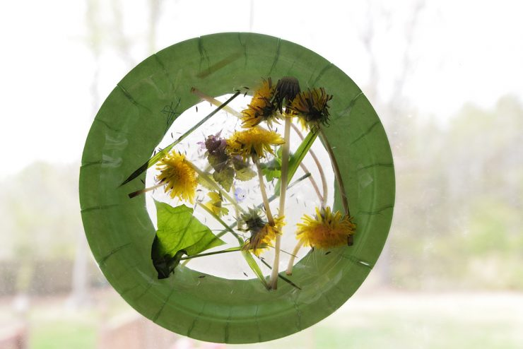 Nature Suncatcher Craft   #ad #CollectiveBias #LongLastingScent