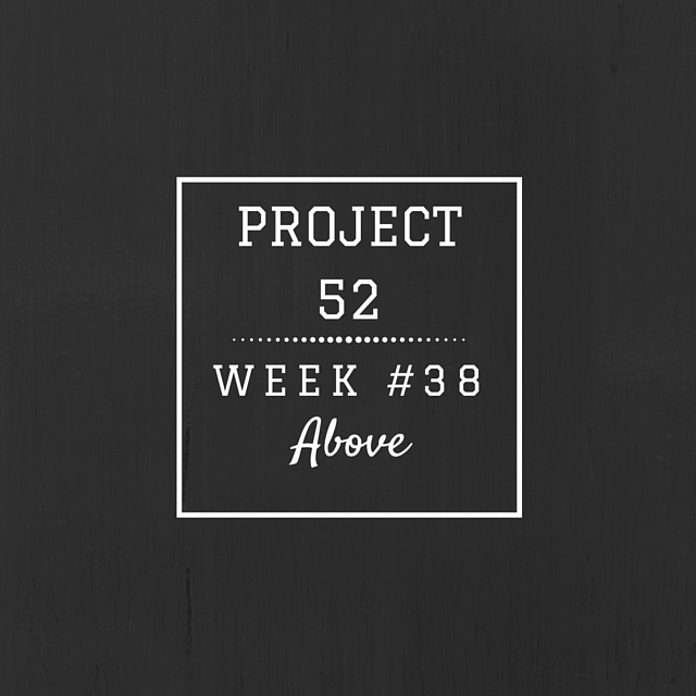 Project52week38