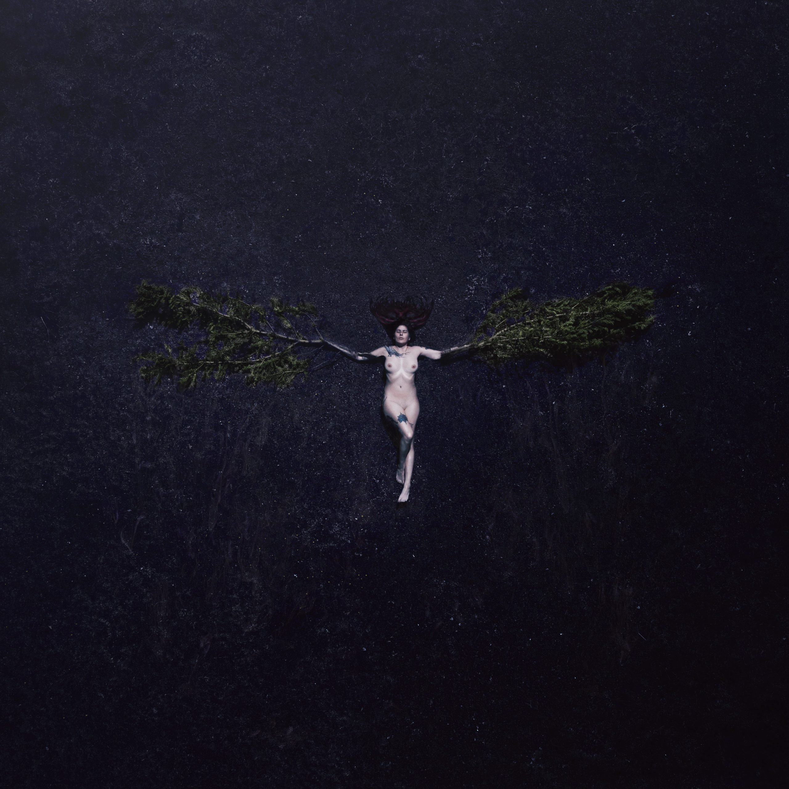 drone self portrait with tree limbs for wings