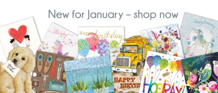 Flamingo Paperie new January range image