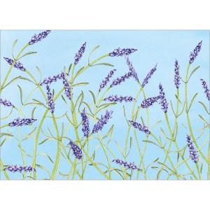 Lavender Card Design