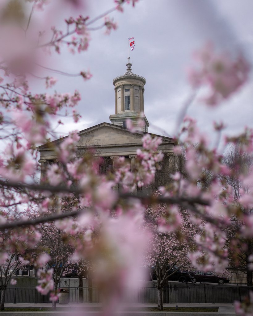 State Capitol through the Cherry Blossoms, Nashville, United States