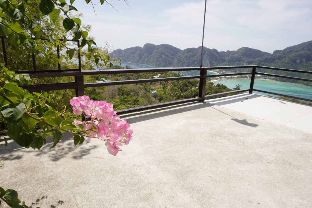 Pink flowers of Viewpoint 3 on Koh Phi Phi Don, Thailand, with water and mountains in background