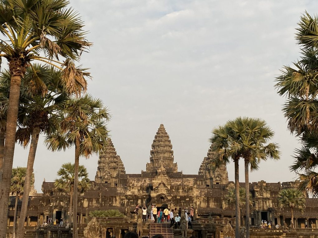 Angkor Wat temple walkway with palm trees