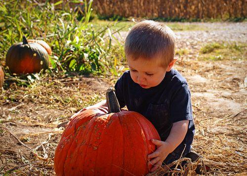 Pumpkinpatch 060_edit