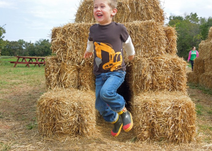 Action shot of the hay tunnel excitement.