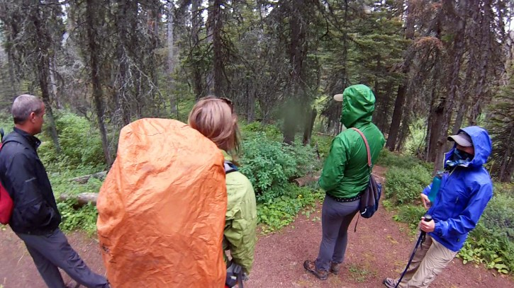 Day hikers in rain gear.