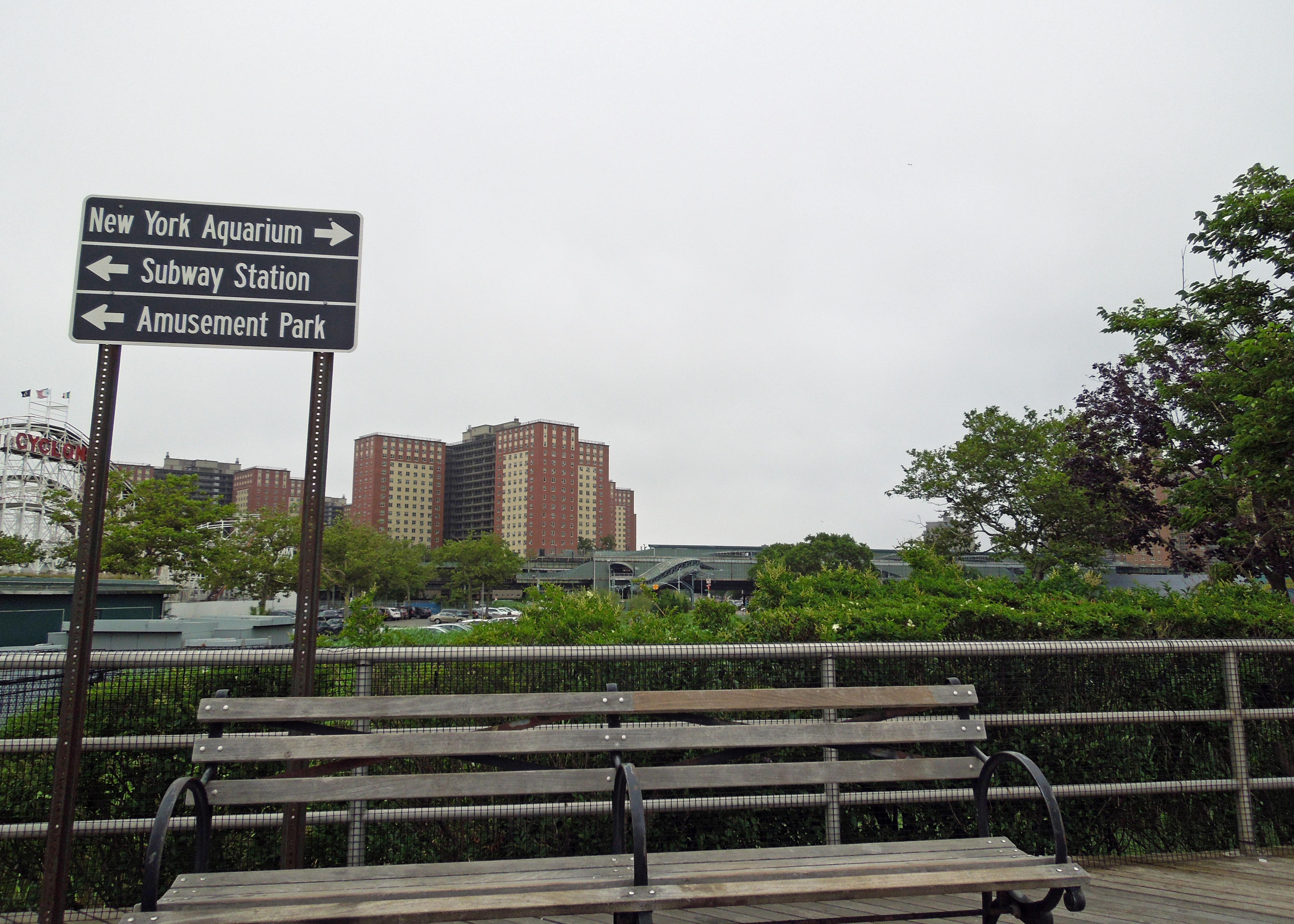 NYC_COLT_3_5279_edit_resize