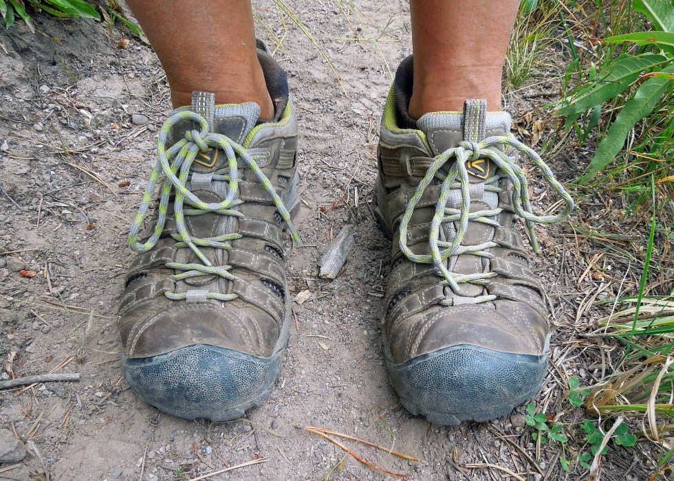 My favorite hiking shoes. KEEN Voyageur.