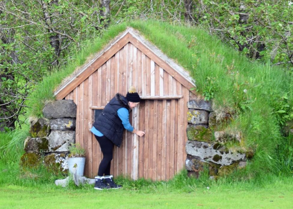 ICELAND_MONDAY_DSC_0071_edit_resize