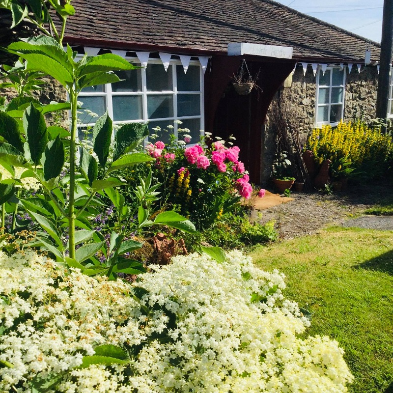 The fornt door and garden full of flowers at Eastnor Pottery in the spring