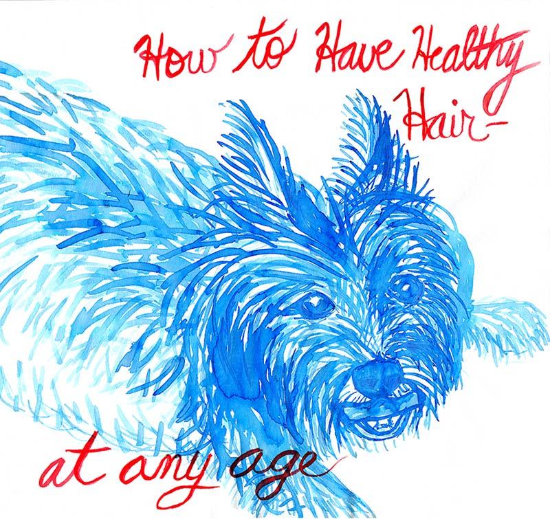 healthy hair_web
