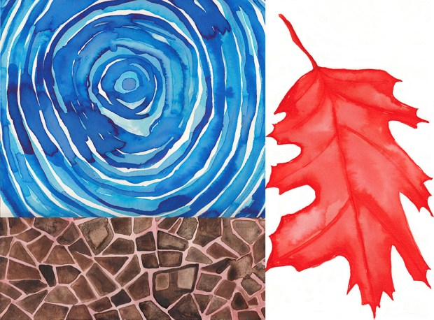 leaf and earth_web