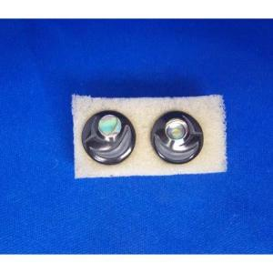Argillite Salmon Egg Stud Earrings byl Myles Edgars