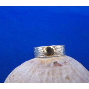 Silver Raven with gold Moon Ring by Carmen Goertzen