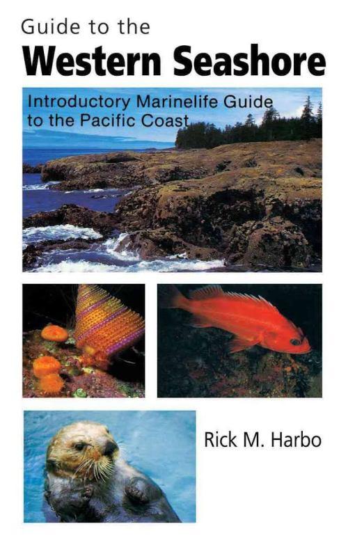 Guide to Westen Seashore