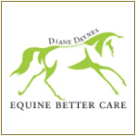Sarah Sjoholm-Patience Team with Equine Better Care