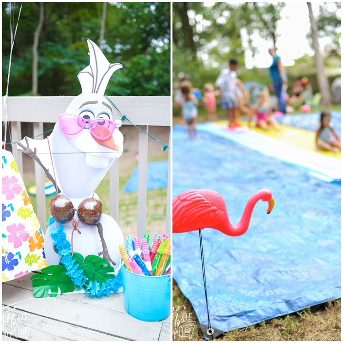 FROZEN in Summer Water Party Sarah Sofia Productions