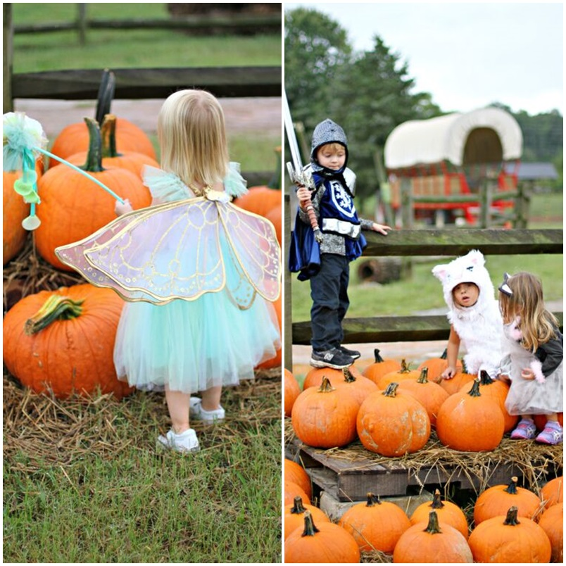 Halloween Costume Hayride Party Part II | Sarah Sofia Productions