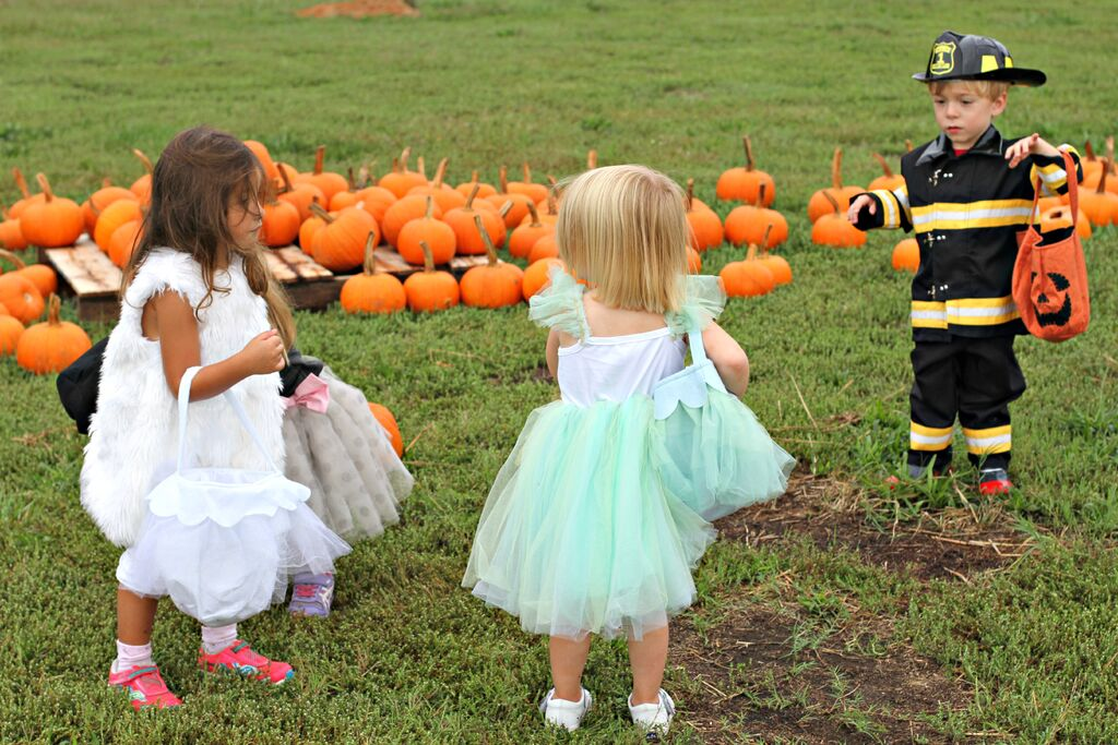 Halloween Party Ideas Sarah Sofia Productions
