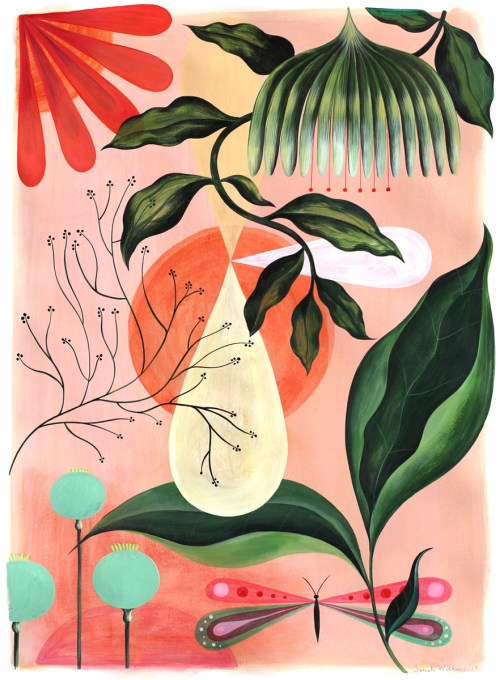 sarah-wilkins-botanical