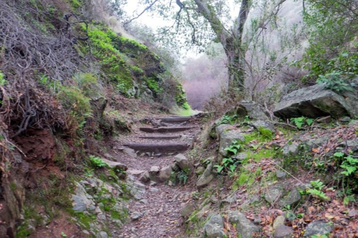 Trail Fears 1